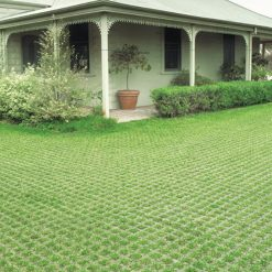 AusCast GrassStone Grass Growing Paver 2