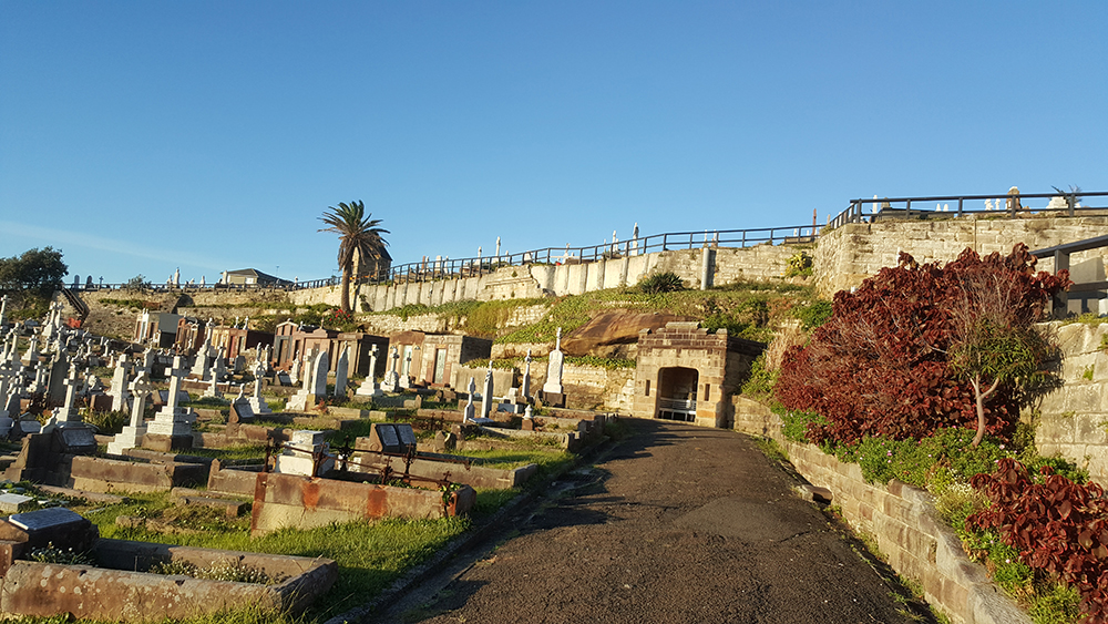 Roocycle ET Arris Fence Waverley Cemetery 3