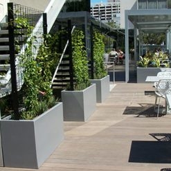 Planter Box Wilshire with screen 7
